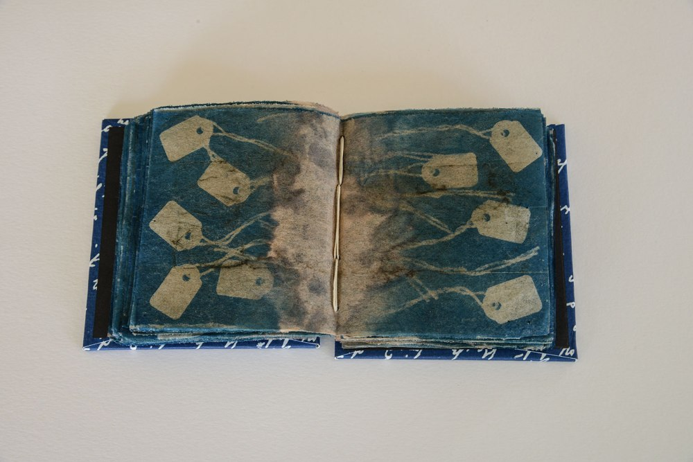 A cyanotype book for Darwin