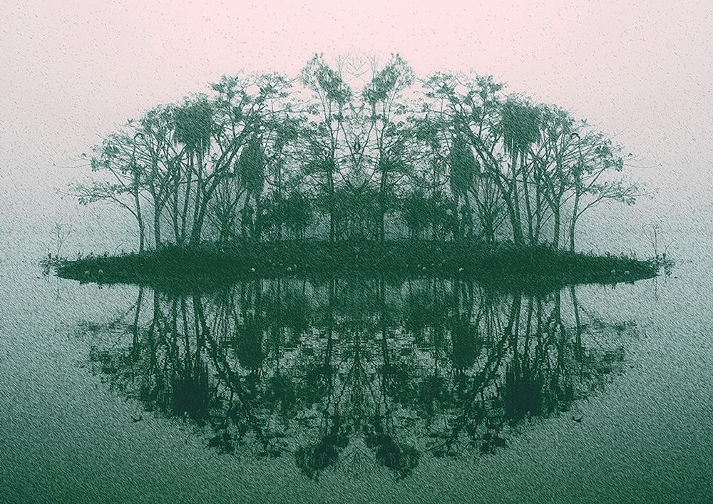 A photo of an island in Murray Lagoon, Rockhampton