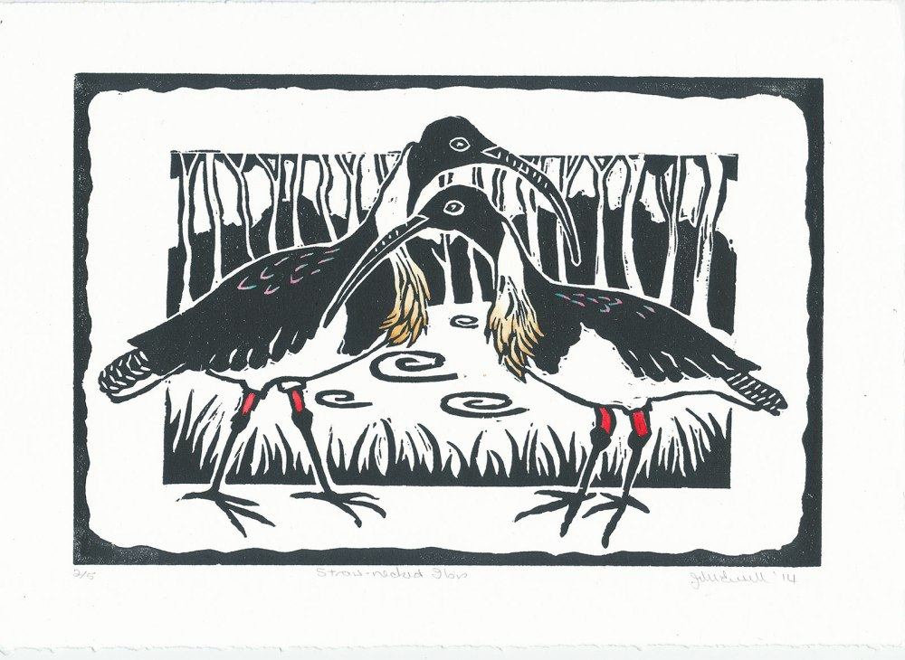Linocut of Straw Necked Ibis
